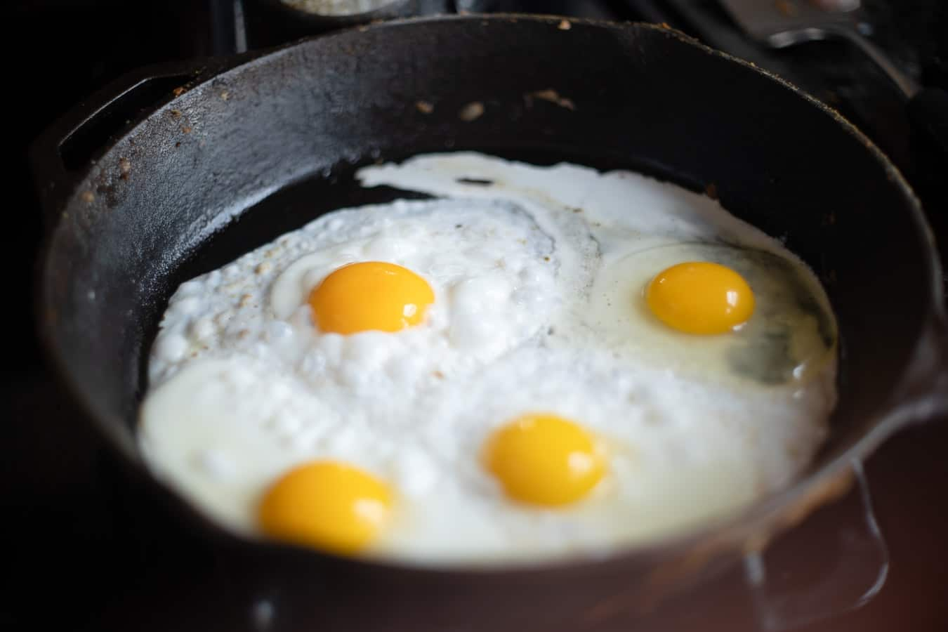 Milk and Egg Protein Sensitivities- a short summary